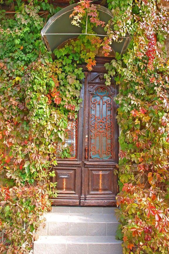 Elegante Holz und Glasmalerei Haustür mit Efeu umwickelt es