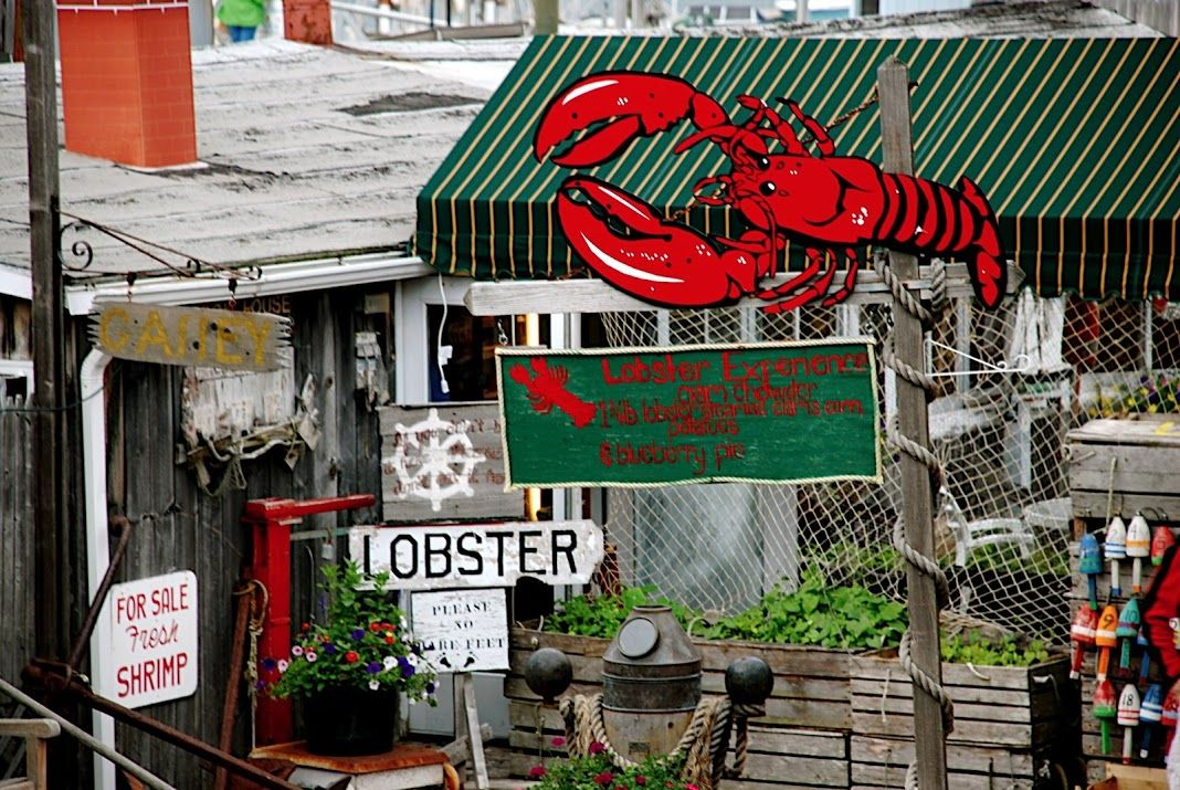 Pin by Susan Clark on Lobster Lobster Lobster Bar harbor