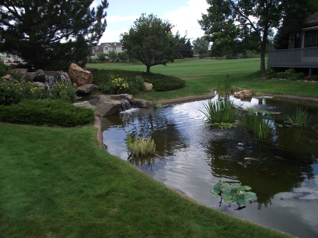 Considerations When Designing An Outdoor Pond Or Backyard Water Feature Http Waterontherocks Com Water Featur Outdoor Ponds Ponds Backyard Garden Pond Design