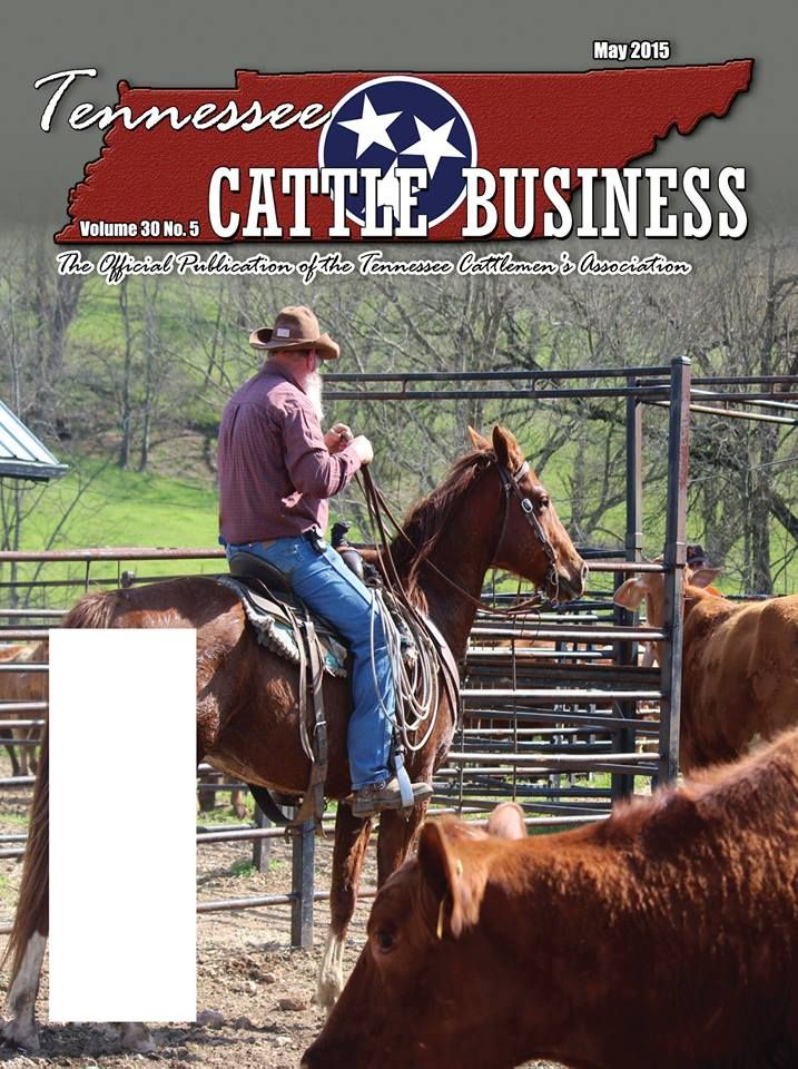 The May issue of the Tennessee Cattle Business magazine will be in your mailboxes soon! Want to receive future issues? Become a TCA member for only $30 per year! www.tncattle.org