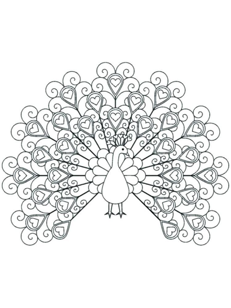Advanced Peacock Coloring Pages Peacock Is A Bird Of Heaven It Is Famous For The Beauty Of Its Fu Peacock Coloring Pages Animal Coloring Pages Coloring Pages