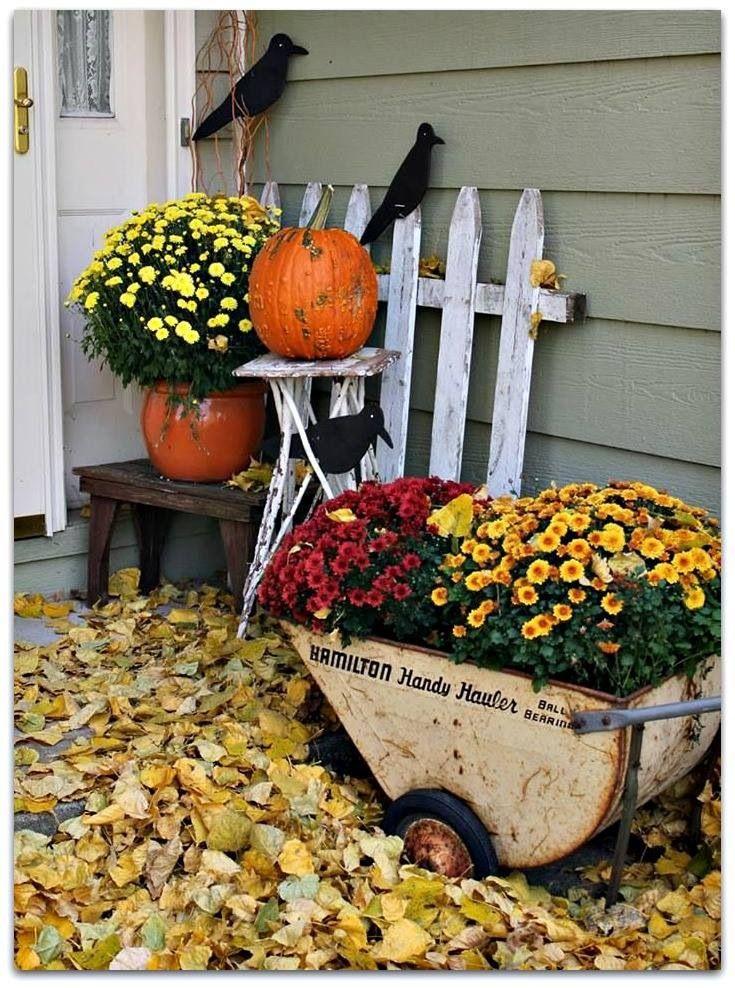 Fall Fall decor!!!!! Pinterest