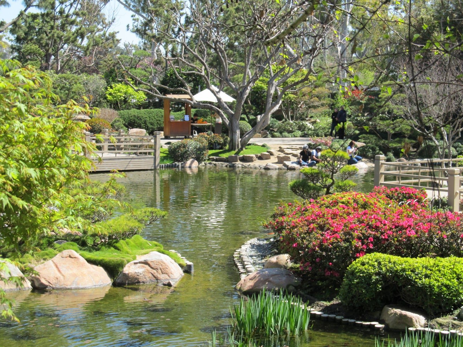 Earl Burns Miller Japanese Garden  Long Beach, Ca