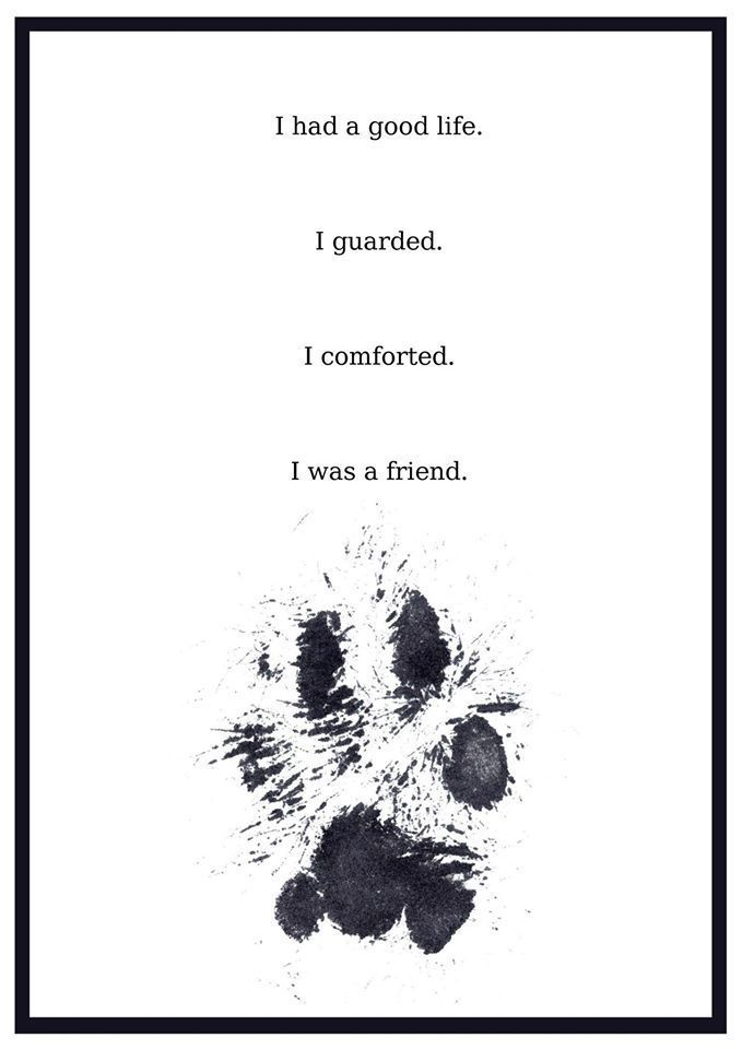 Farewell, my old friend. | Pets | Dog love, Dog quotes, Dog ...