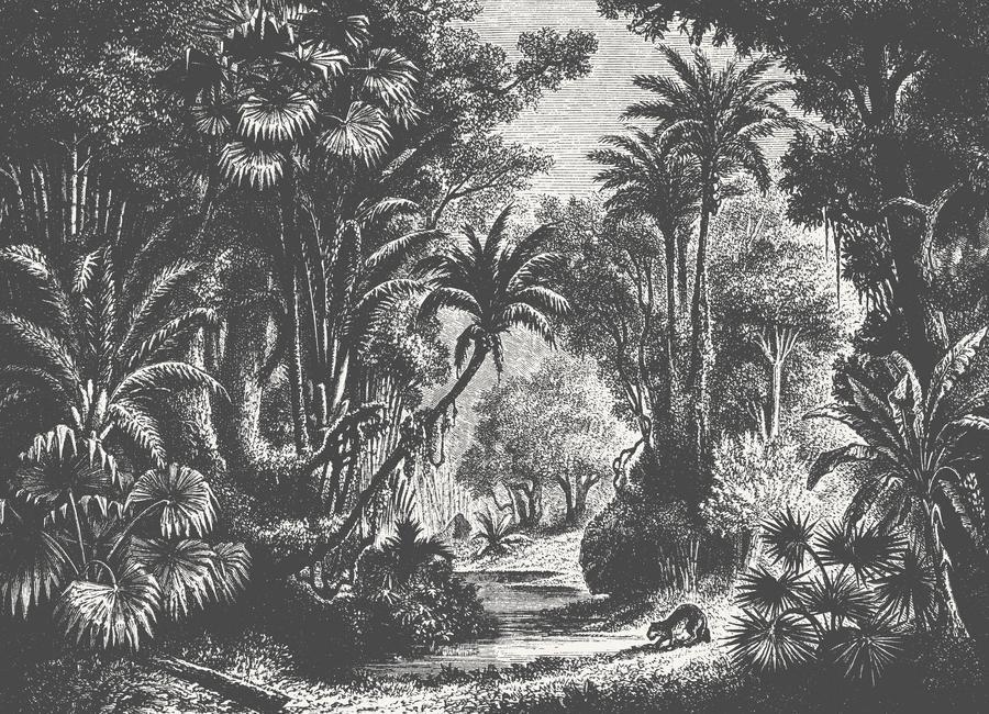 Indian Jungle by Astër Retro Vintage Black White