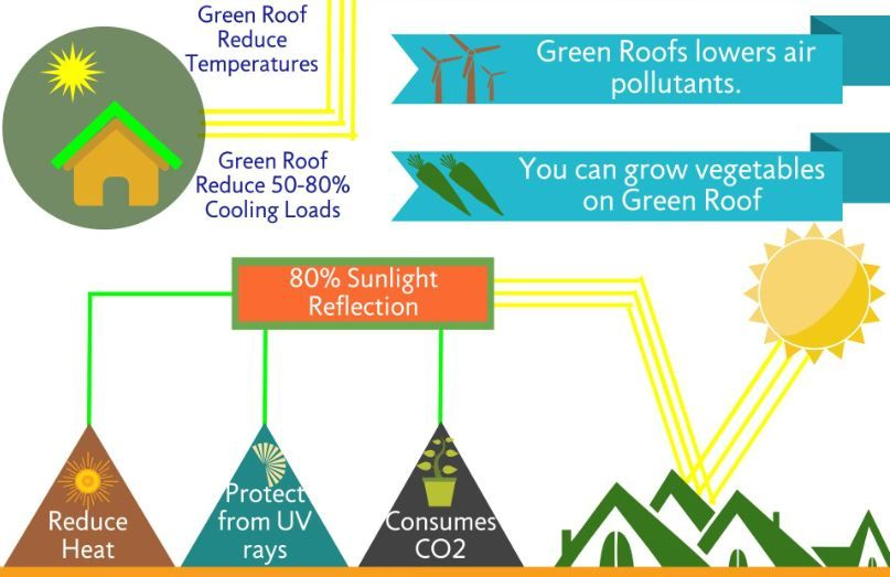 Green Roof Benefits That Everyone Should Know Check Why Green Roofs Are Better Option For Roofing Greenroof Eco Green Roof Benefits Roofing Diy Green Roof