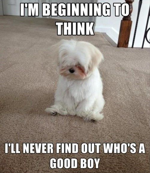 Self Doubt...I Has it