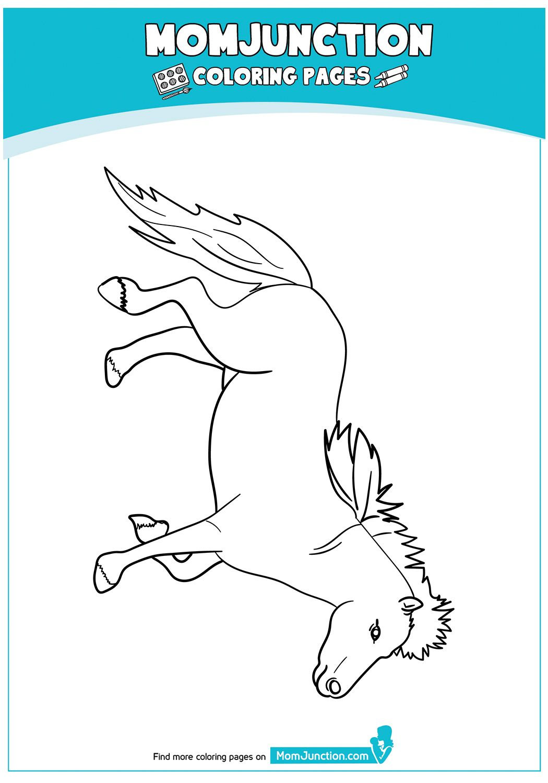 Miniature Horses 17 Zi Da Coloring Pages Horse Coloring Pages Cute Coloring Pages [ 1500 x 1050 Pixel ]