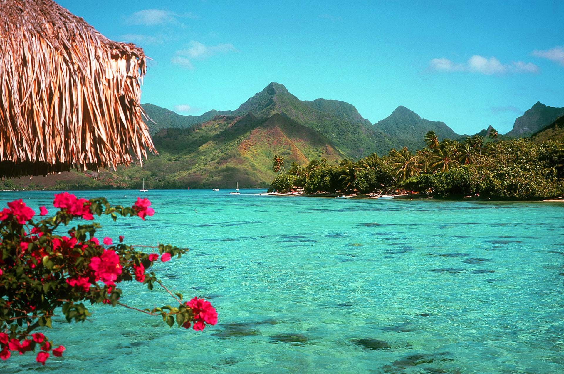 Fondo pantalla paisaje hermosa playa ideas para el hogar for Fotos para fondo de pantalla de escritorio