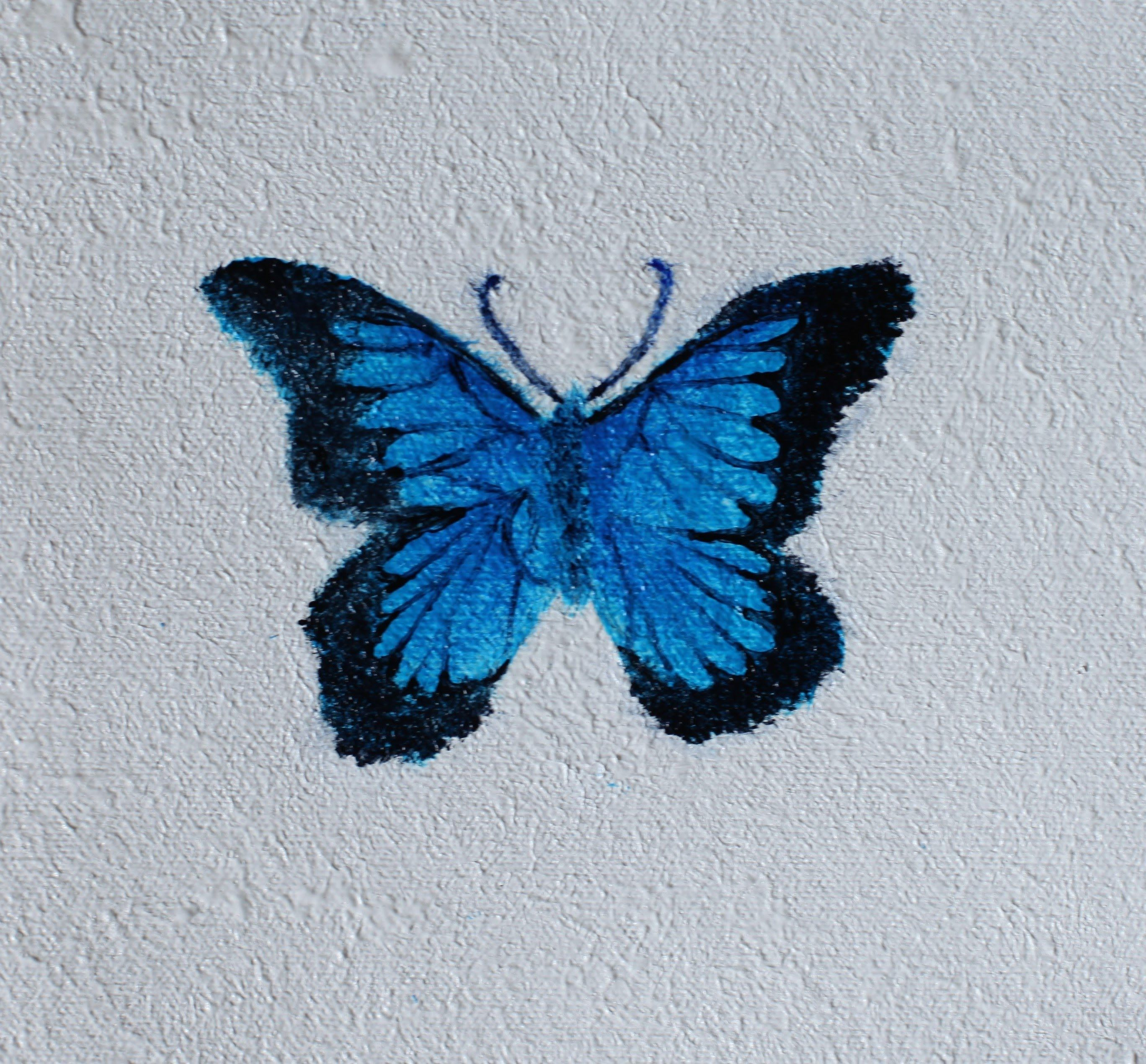 How To: Paint a Butterfly Using Acrylics
