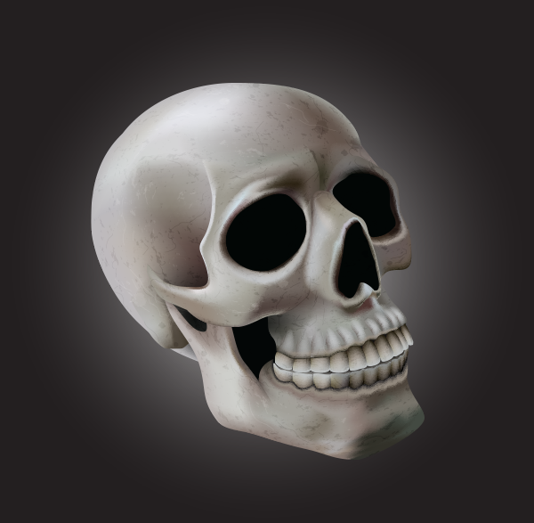 Using Meshes to Create a Detailed Skull With Adobe Illustrator – Design & Illustration – Tuts+ Tutorials