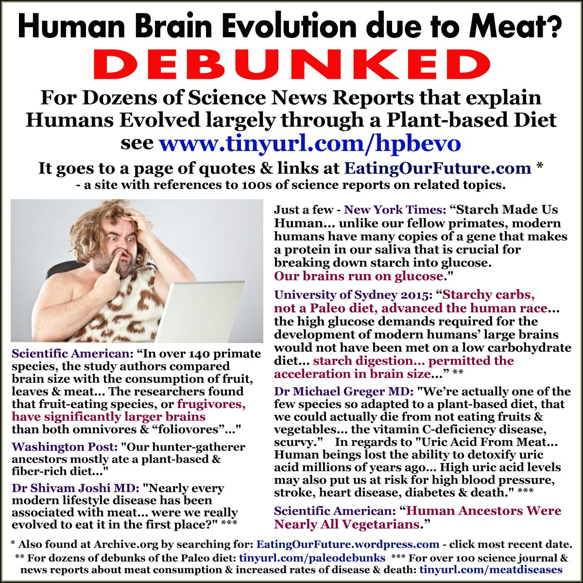 Human Evolution Brain Intelligence Evolved Via Plant Based Diets Diet Myths Paleo Vegan Diet Diet