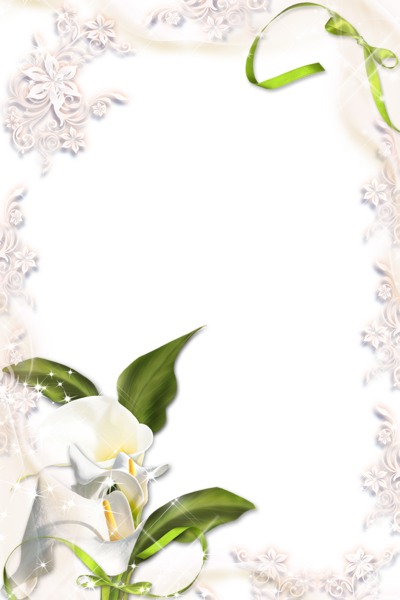 Gallery Recent Updates Calla Lily Easter Lily Paper Background Design