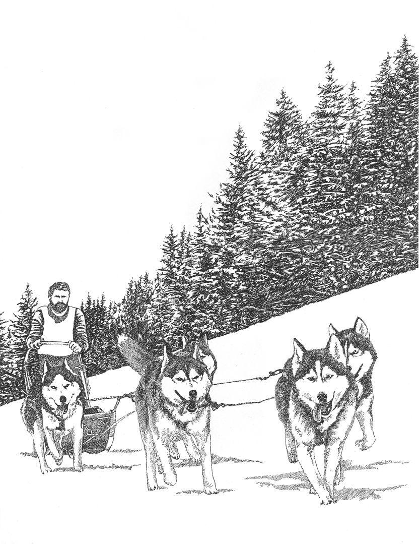 Todtmoos Germany Dog Coloring Page Animal Illustration Dog Sledding [ 1079 x 834 Pixel ]
