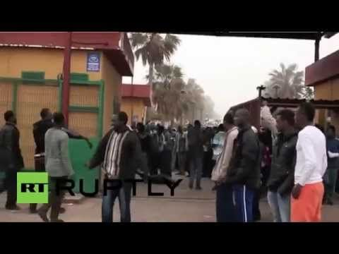 African Migrants And Others Tearing Down Traffic Lights, Attacking Shops...