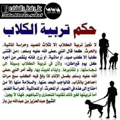 حكم تربية الكلاب Islam Islamic Qoutes Positivity