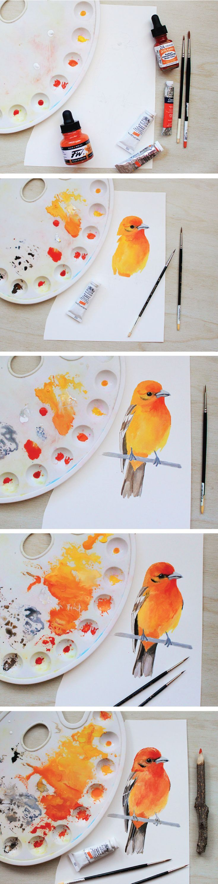 The Evolution Of A Bird Painting How I Paint And What Materials I