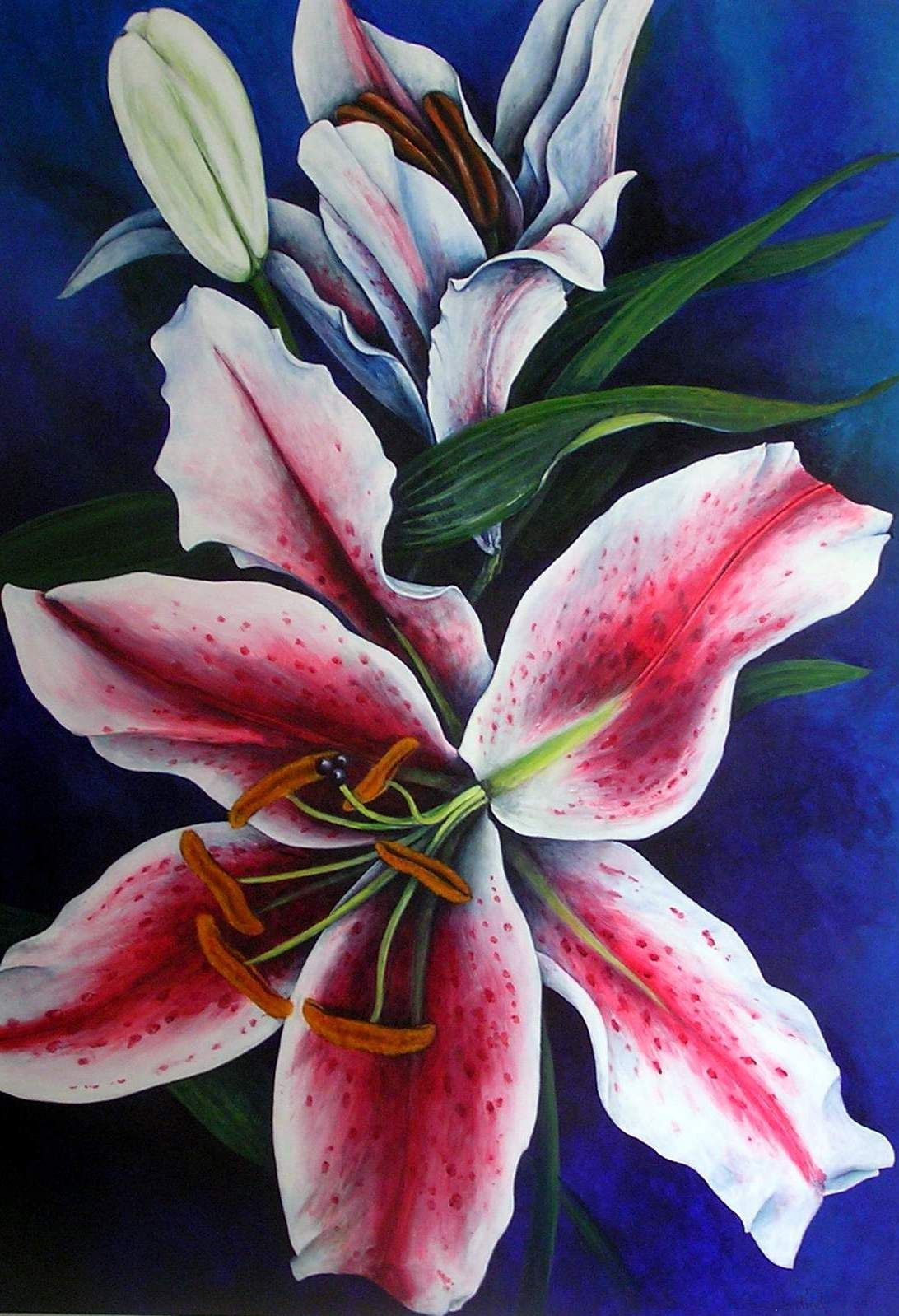 Stargazer Lily acrylic painting by Sue Harding (With