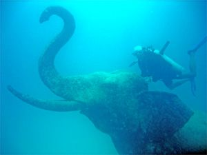 Amazing Diving With Elephants In Thailand Where Else Scuba Diving Thailand Scuba Diving Photography Diving