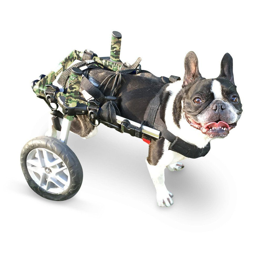 Dog Wheelchair Camo For Small Dogs 11 25 Lbs By Walkin