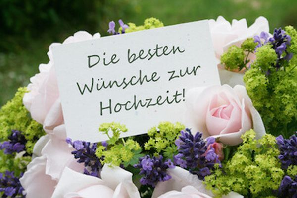 Lustige Bilder Mit Spruchen Witzige Bilder Kostenlos Downloaden Hochzeit Gluckwunsch Spruch Spruche Hochzeit Wunsche Zur Hochzeit