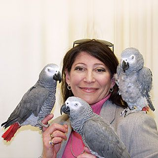 Irene Pepperberg and her African Grey parrots. One of the most inspiring  women in science for me b682791dd1