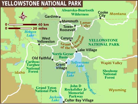 More Dog Friendly Activities Near Yellowstone National Park