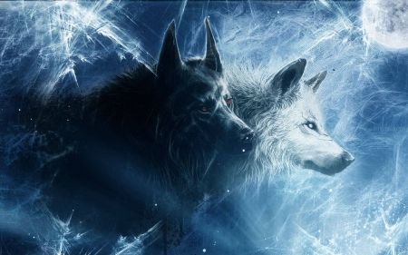 Night Call Desktop Nexus Wallpapers Wolf Anime Wolf Wallpaper 1920x1080 Wolf Art Anime wolf wallpaper 1920x1080