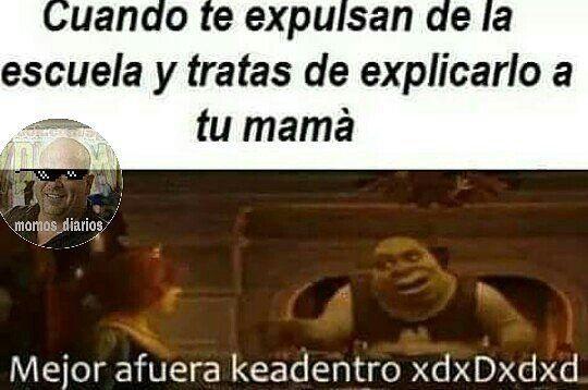 Resultado De Imagen Para Momos Sdlg Funny Memes Memes Shrek Memes