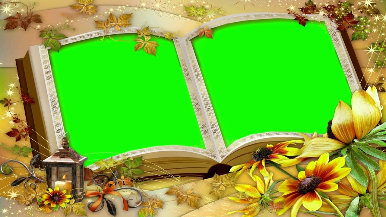 Wedding Video Background Green Screen Autumn Love Chroma Key Video 634 Green Screen Video Backgrounds Green Screen Backgrounds Greenscreen