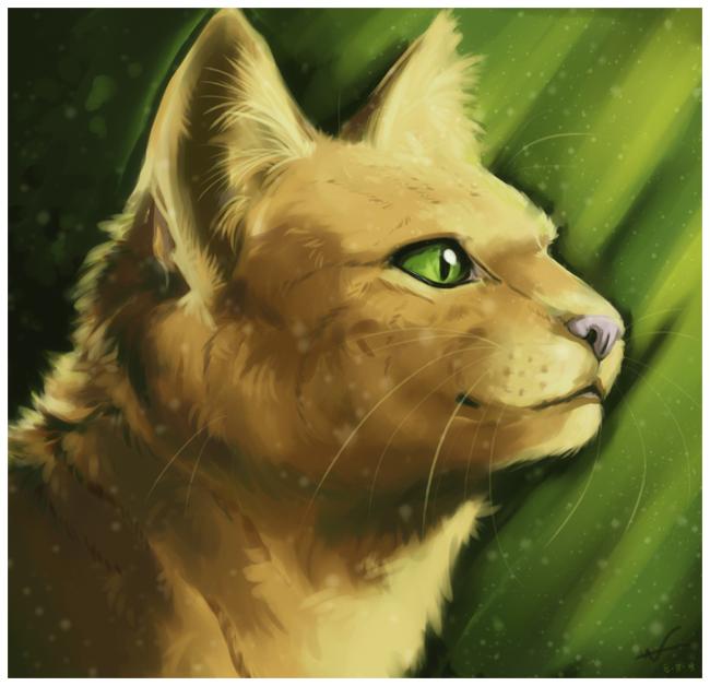 Výsledek obrázku pro warriors cats sandstorm