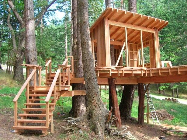 Gallery for simple wooden house in forest treehouse 2 for Three tree treehouse plans