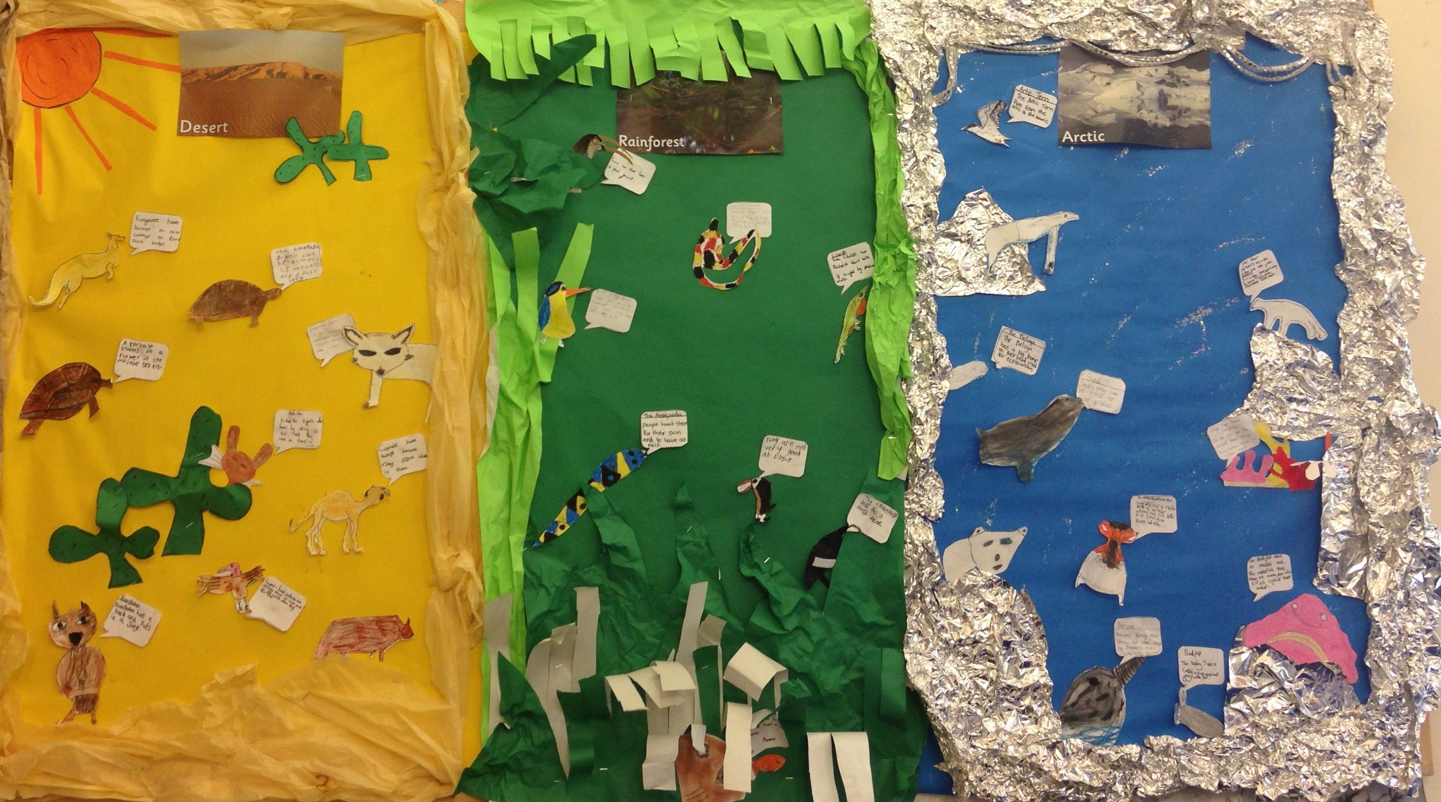 Science Display For Living Things And Their Habitats