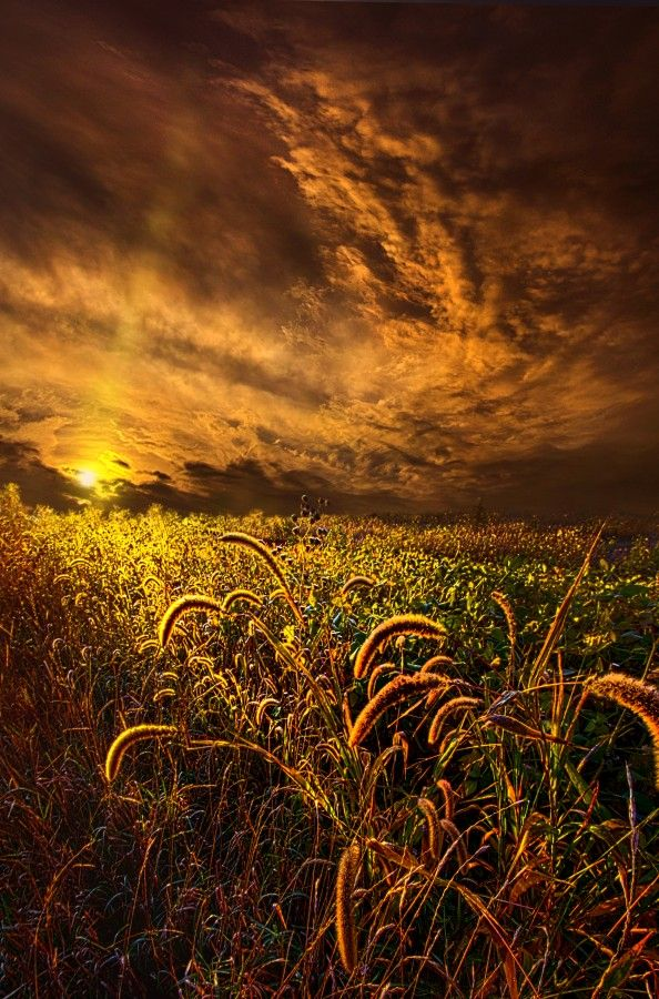 "50bestphotos: ""Time Everlasting by PhilKoch http://ift.tt/1pxr7Ng """