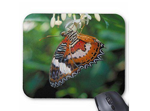 ハレギチョウのマウスパッド:フォトパッド( 世界の昆虫シリーズ ) 熱帯スタジオ http://www.amazon.co.jp/dp/B015JIXSME/ref=cm_sw_r_pi_dp_qfodwb1TGREG3