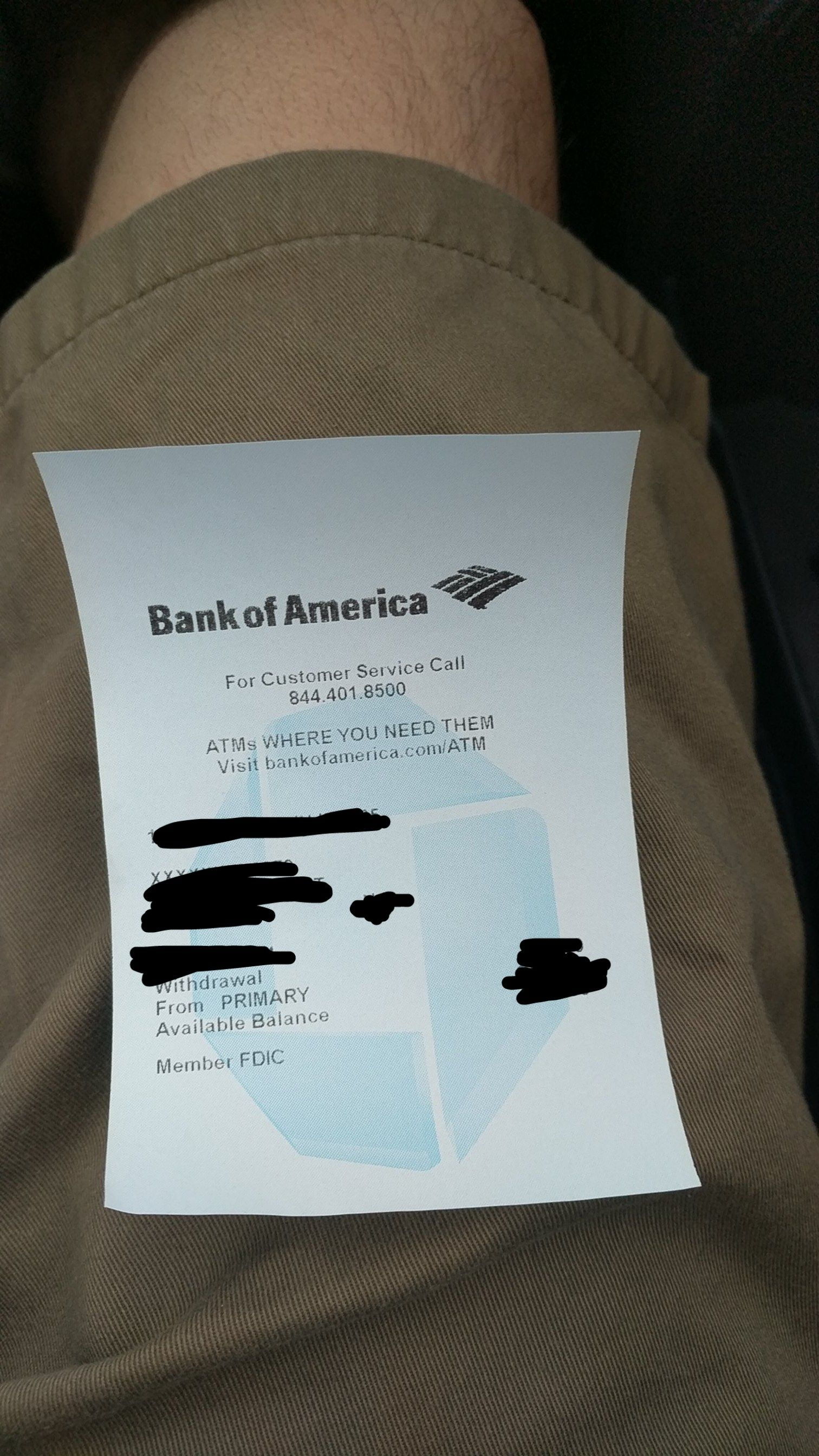 My Bank of America reciept has the Chase bank logo on it  | Pets