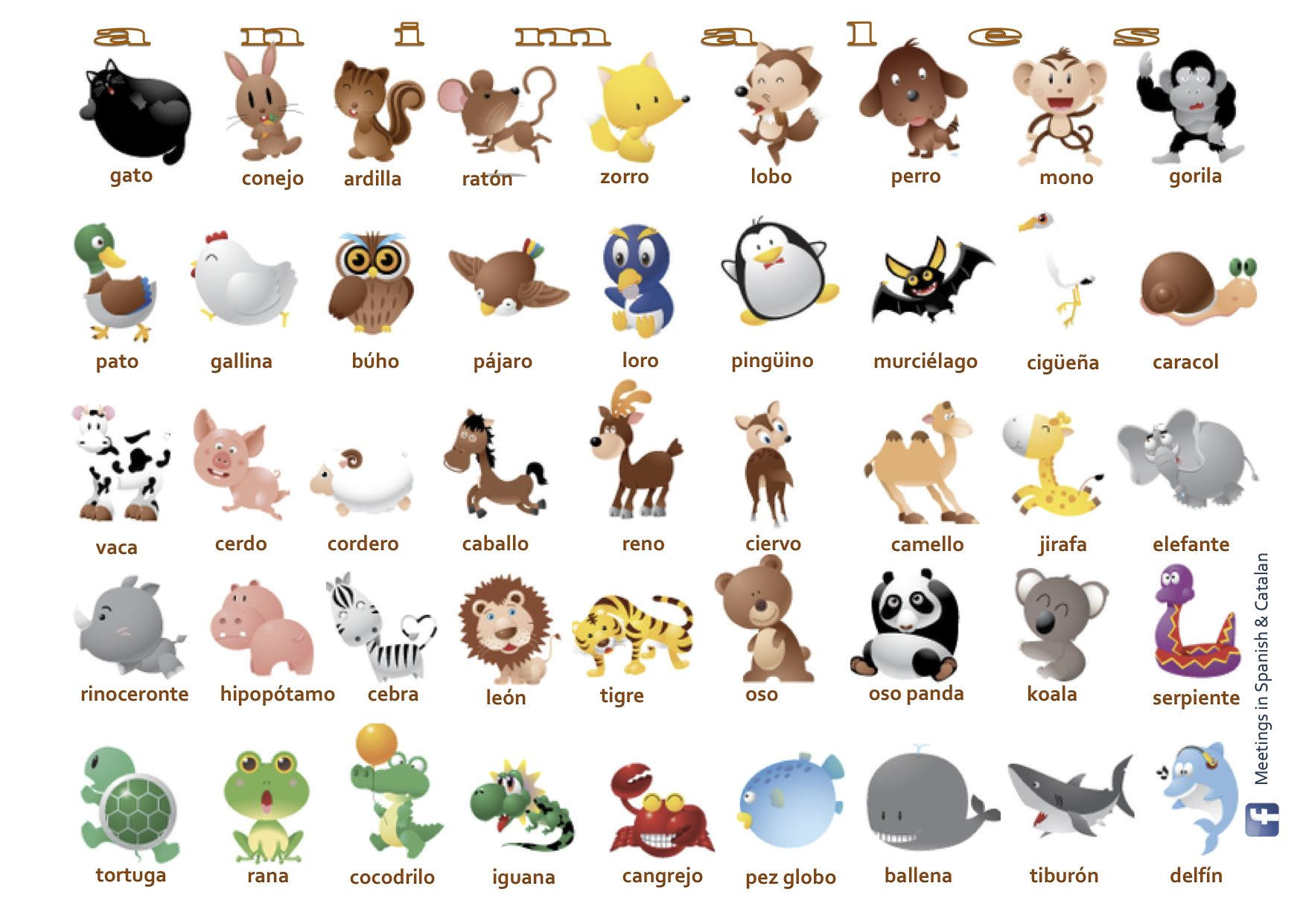 Animales/Animals Learn portuguese