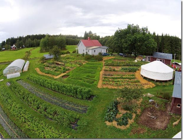Thinking about and designing the function of new land can for Small permaculture garden designs
