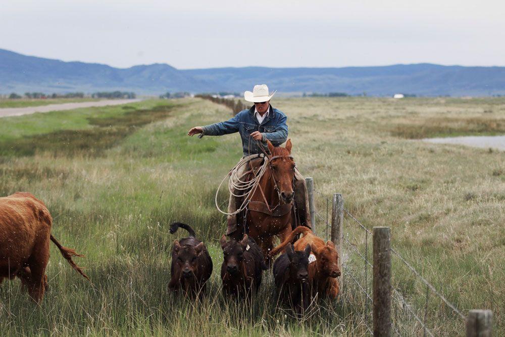 Ford Yates est un grand amoureux d'outdoor américain, chasseur et passionné de permaculture. Mais surtout, c'est un photographe de talent.