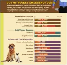 Out Of Pocket Emergency Costs For Pets National Pet First Aid Awareness Month Pets First Awareness Month Emergency