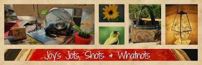 Joy's Jots, Shots & Whatnots