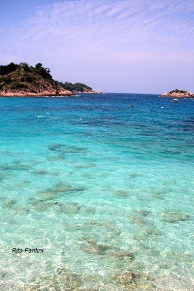 crystal clear water around Redang island #Redang #Malaysia ...