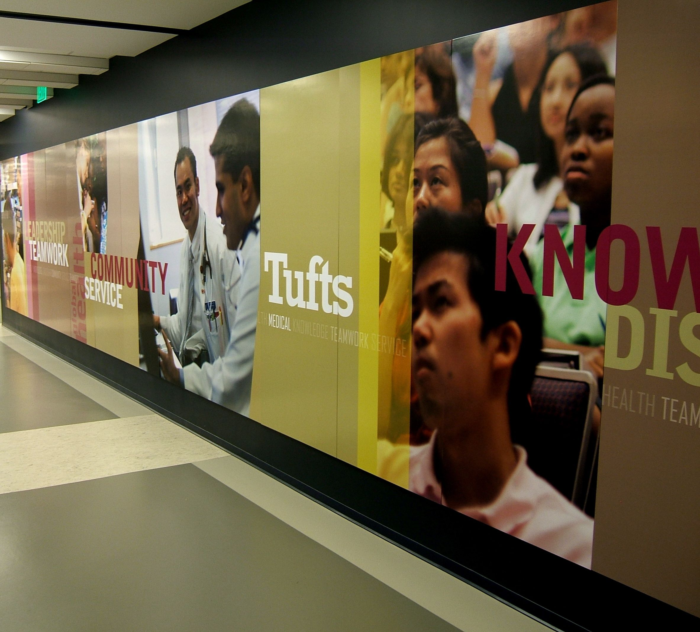 Tufts Wall Mural | office | Pinterest | Wall murals, Empty wall and ...