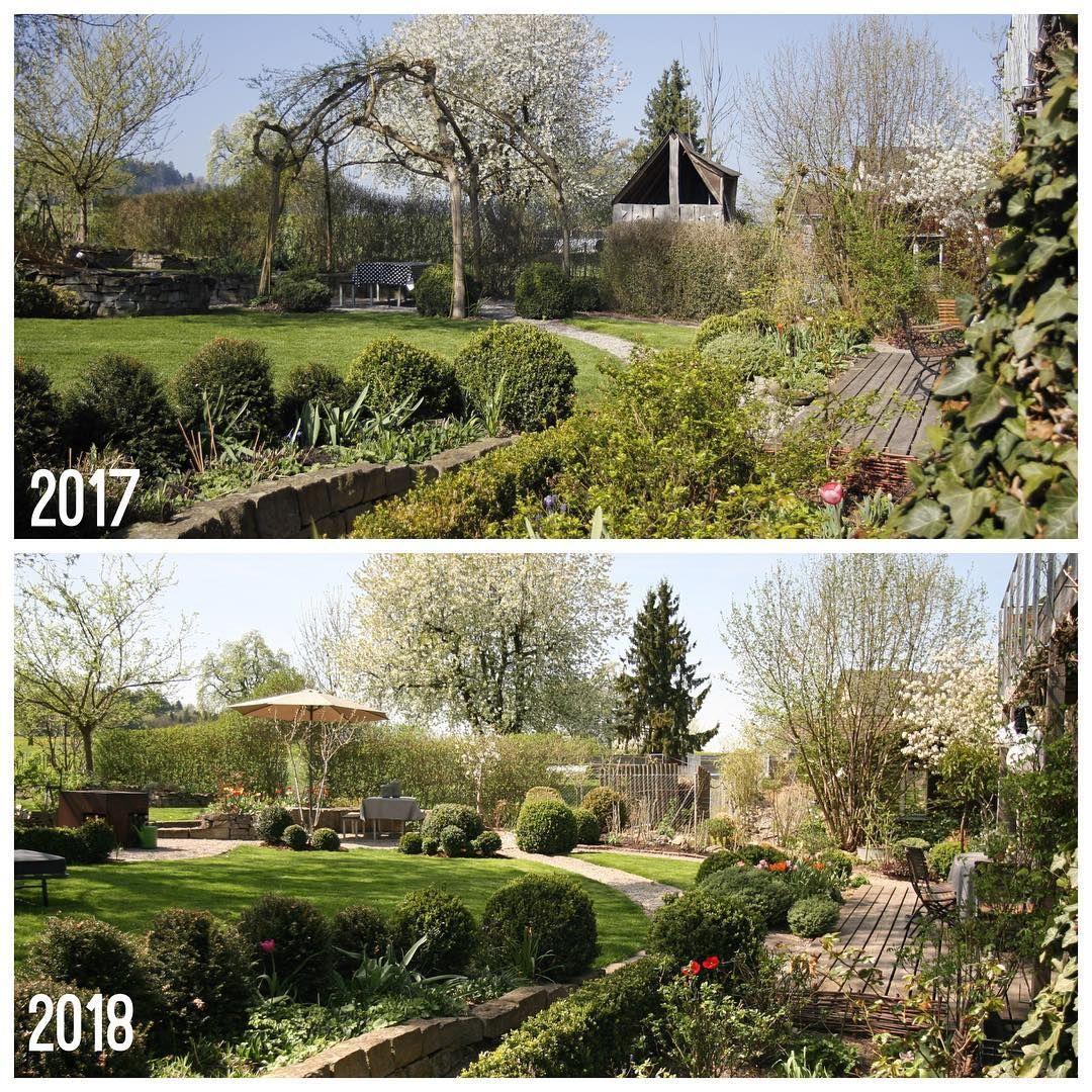 Was Gefallt Euch Besser Anders Wenndiekindergrosswerden Baumhaus Gartenumgestaltung Gartenvorhernachher Einschwe Gartenumgestaltung Garten Gartengestaltung