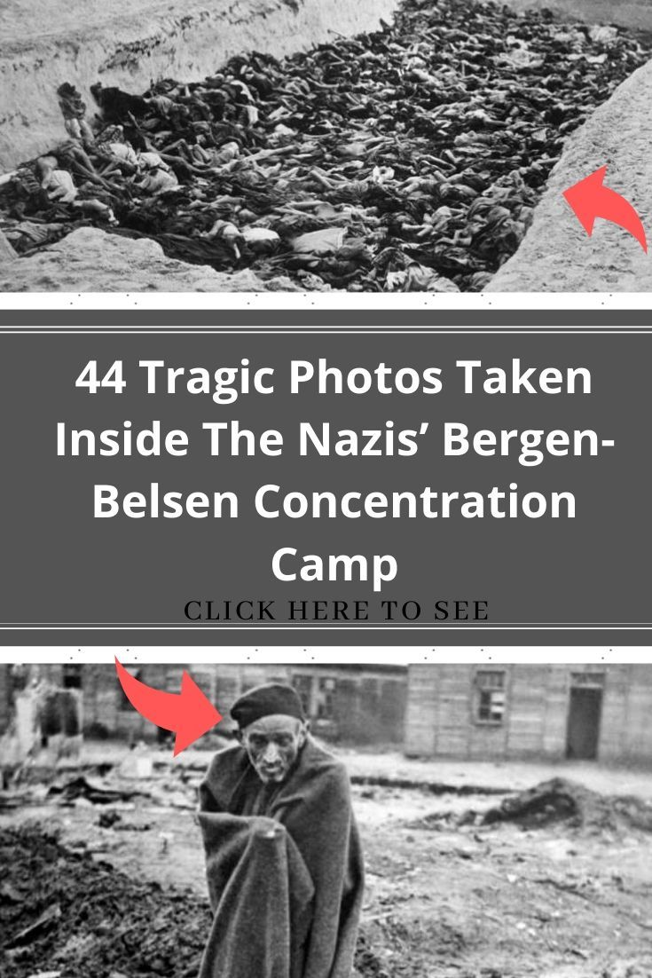New Funny Pins 44 Tragic Photos Taken Inside The Nazis' Bergen-Belsen Concentration Camp 44 Tragic Photos Taken Inside The Nazis' Bergen-Belsen Concentration Camp 3