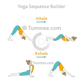 plan your yoga sequences for all levels of students with