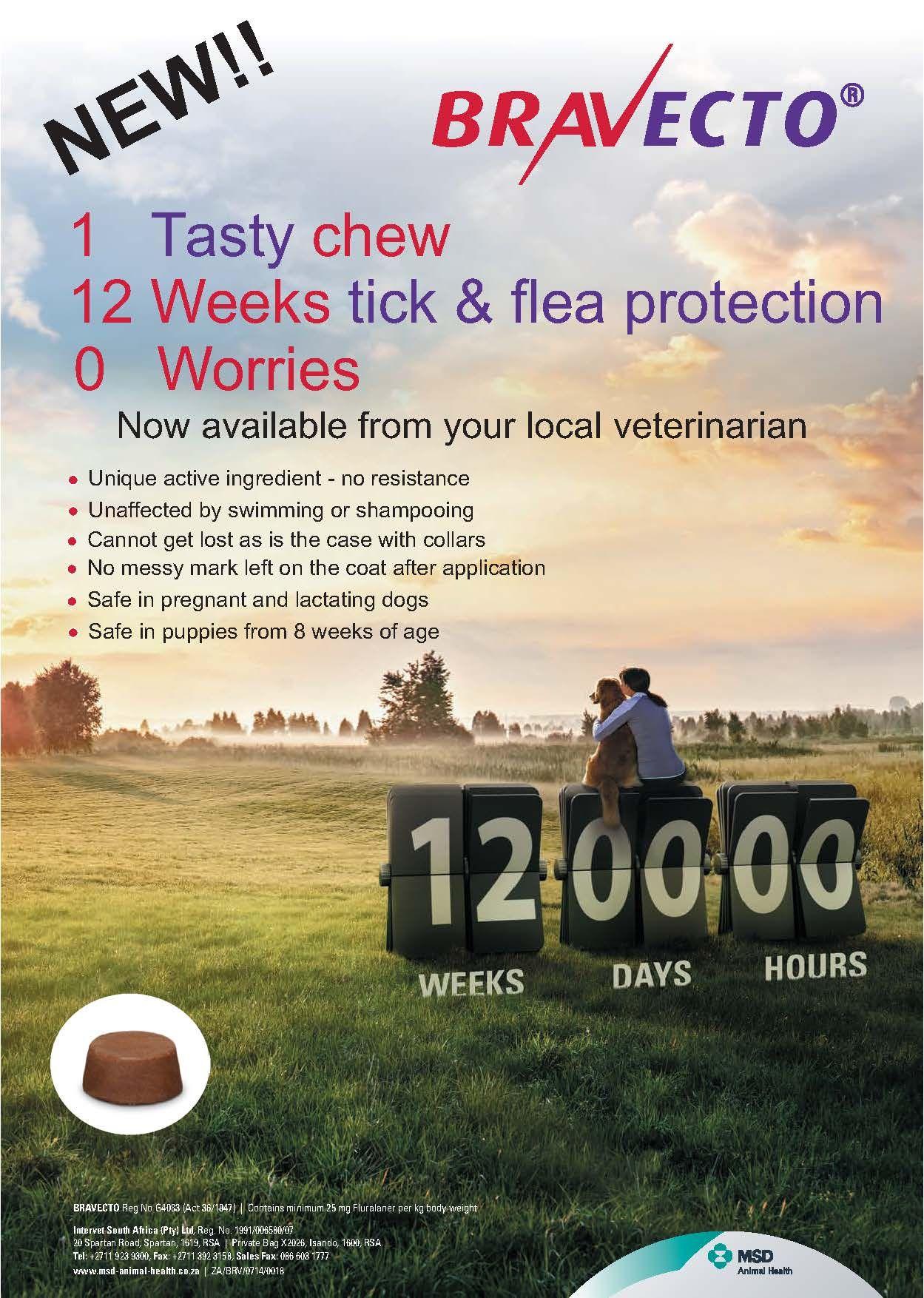 graphic regarding Bravecto Printable Coupons identified as bravecto poster Merchandise Fleas, Animals, Puppies