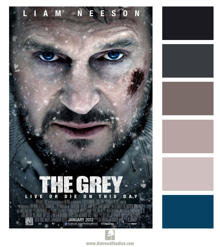 """Color palette based on the movie poster for """"The Grey"""""""