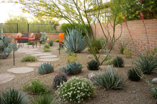 Ravishing desert landscaping plants with pool for modern Modern desert landscaping ideas