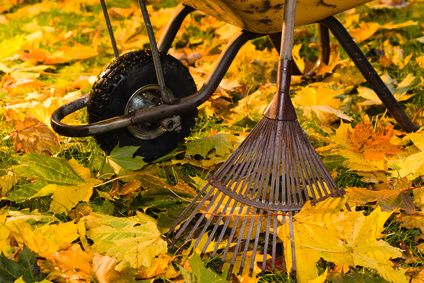 Home Tip Tuesday: Fall Garden Maintenance Checklist - http://homechanneltv.blogspot.com/2016/11/home-tip-tuesday-fall-garden.html